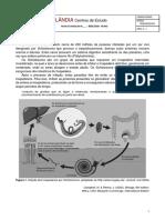 Bio 10 - Heterotrofia