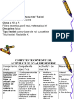 Proiect Didactic-rad X