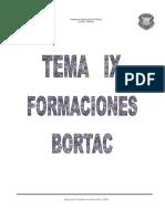Tema 9 Formaciones Bortac
