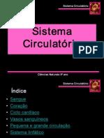 sistemacirculatorioelinfatico