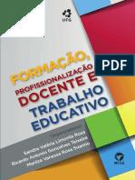 livro FORMACAO PROFISSIONALIZACAO DOCENTE