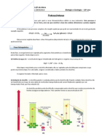 30277242-BioGeo10-Informativa9-fotossintese