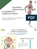 82097_pp_sistema_cardiovascular