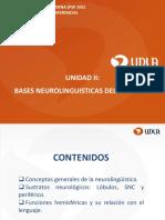 Bases neurolinguisticas del lenguaje