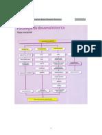 o-desenvolvimento-piaget1