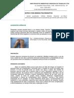 ACIDENTES COM ANIMAIS PEÇONHENTOS RECOMENDAÇÕES-Copy-Copy