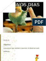 AVES EXOTICAS 10-05-21