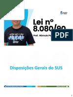 LEI_8080_90
