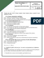 devoir-de-synthèse-n°3--2015-2016(mme-el-bsir-zina)