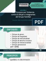 LECCIÓN 1 CURSO VIOLENCIA MUJER Vias procesales protección