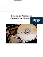 Sistema+de+Arquivos+-+Silvio+Ferreira
