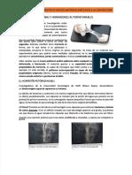 docdownloader.com-pdf-resinas-y-hormigones-autorreparables-dd_f78c42e801e73e173538881c7db776df