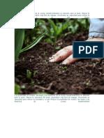 compost y compuestos agre