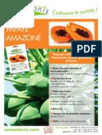 fiche-papayer-amazone-taux-germination-semences-optimum-1516118823