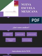 Diapositivas NEM