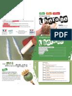 16 réponses sur l'heroïne (FR)