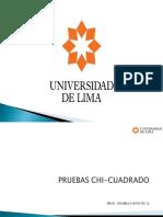 PRUEBAS CHI-CUADRADO