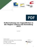 kulturnutzerbefragung_jugendliche_coburg_sonneberg