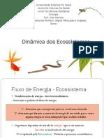 Dinamica-dos-Ecossistemas