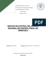 Control Fiscal - Resumen #2