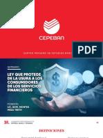 PPT - Ley que protege de la Usura (1) (1)