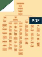 Mapa conceptual-tradición cochabambina