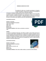 Minerales Usados en El Plateo