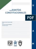 Garantias Constitucionales - Jesus de La Fuente Rodriguez