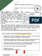 cou 6Transp international PDF (1)