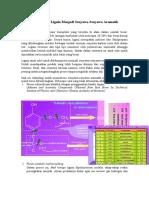 Dekomposisi Lignin Menjadi Senyawa-Senyawa Aromatik