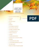 RECHIZITE-1
