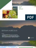 7º Ano Principais Sistemas Agropecuarios