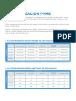 Categorías-PyMEs-WEB