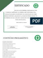 Branco e Folha Verde Reconhecimento Certificado