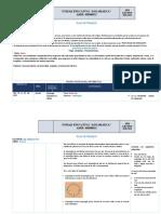 8.1 PLAN DE CONTINGENCIA 2DO-A S33