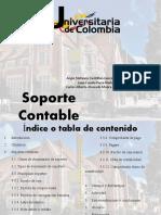 exposicion soportes contables (1)