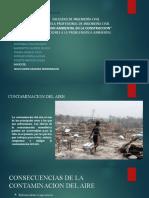 expocision de gestion ambiental (1) (2)