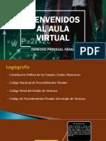 Diapositivas Proceso Penal Completas