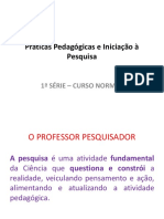 2B- O PROFESSOR PESQUISADOR