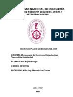 LABO N°3 MICROSCOPÍA 2020-2 PLANTILLA DE LUZ TRANSMITIDA DE ANDALUCITA