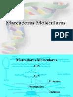 clase4_marcadores_moleculares1
