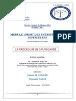 La Procedure de Sauvegarde PDF .