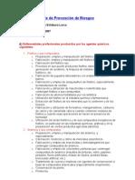 Apunte_de_Prevenci_n_de_Riesgos[1][1] (1)