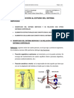 introduccion_estudio_sistema_nervioso