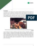 intensivoenem-literatura-Romantismo_prosa-05-08-2019-57dc1d58f72fe24fe2b8cf9c6cd9bf6c (1)