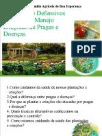 Produção de defensivos naturais no manejo integrado de pragas e doenças