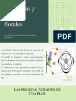 Diagramas y formulas florales aplicación de conocimientos para Ing Agronómos