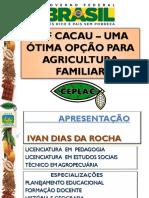 Sistemas Agroflorestais com cacau