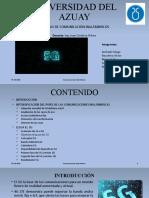 Presentación 5G_Grupo1