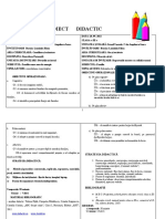 PROIECT-DIDACTIC-DP-ED.CIVICA
